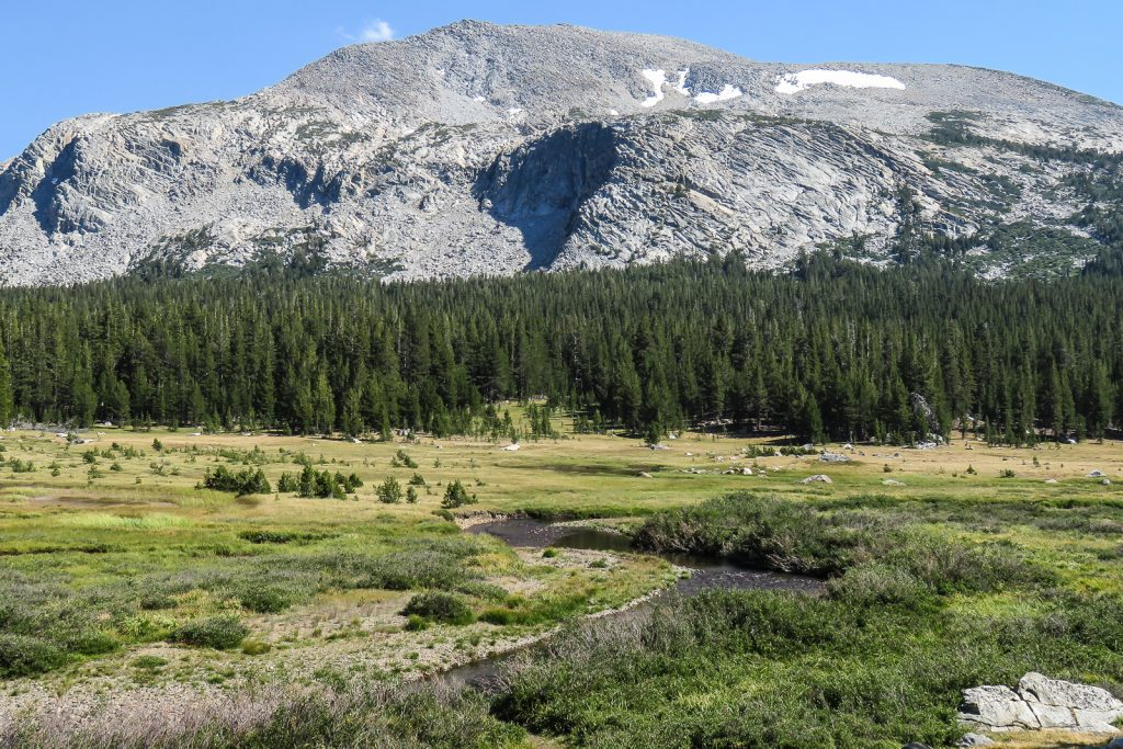 Dana Meadows and Mammoth Peak along Tioga Road Drive