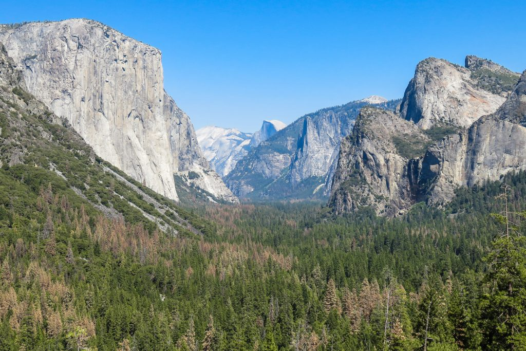 Yosemite Valley View from Tunnel Viewpoint