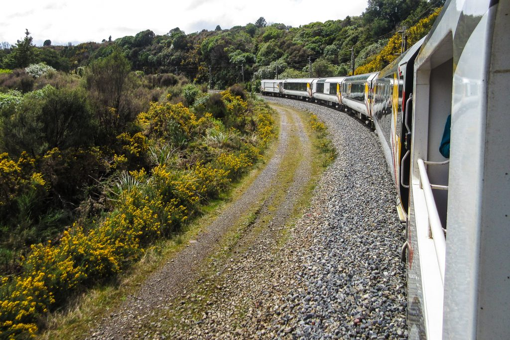 Kiwi Rail Auckland to Wellington Train, tranzalpine