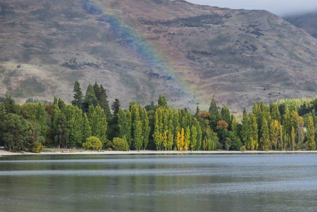 Wanaka Lake in the Autumn Colours, SOuth ISland New Zealand Itinerary