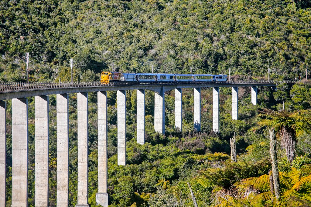 Northern Explorer Auckland to Wellington train, tranzalpine, wellington to Auckland kiwi rail.